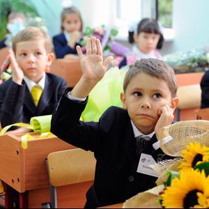 Школы Пикалёво